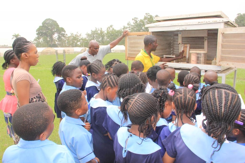 Dayspring School in Ibadan - Our Trip to IITA